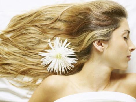 Tratamientos cabello-pelo con Aceite de Oliva
