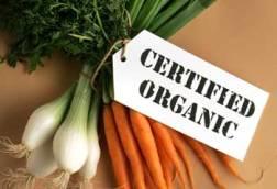 ¿Alimentación Orgánica pero sin una buena combinación?